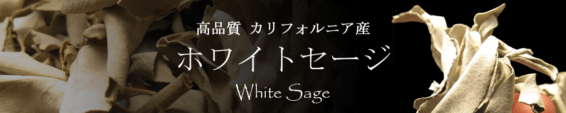 ホワイトセージ