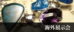 海外展示会商品